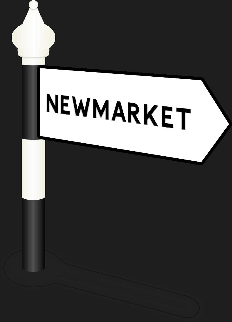Newmarket Road Sign